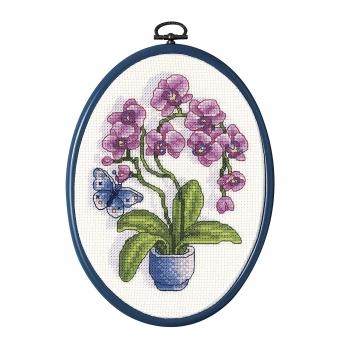 orhidee.jpg