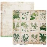 Disainpaber Romantic Botanic SCRAPRB03 30,5*30,5 cm