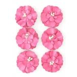Paberlill Cynia 6tk/pk roosa