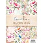 "Disainpaberid ""Tropical Birds""  A4 40 lehte"